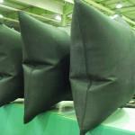 DSC02800-150x150